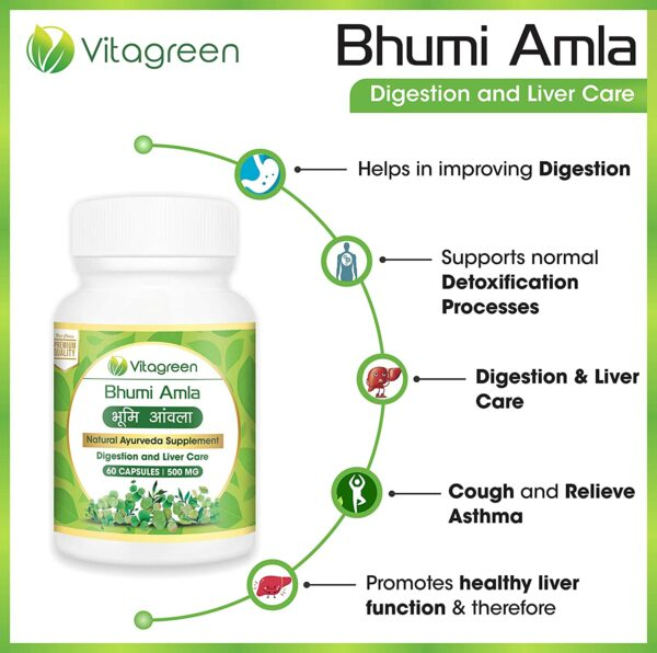 VitaGreen Bhumi Amla For Liver Cleanse and Detox, 500 mg. 120 Capsules (Pack of two) 100% Natural complement